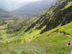Abstieg vom Hohneck
