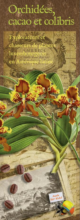 Orchidées-cacao-et-colibris